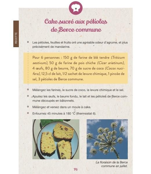 Les Petites Herbes  Christelle Bonnal 45 plantes sauvages à récolter et déguster (2)