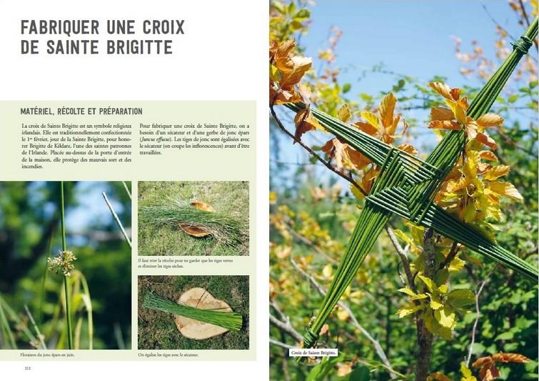 Les Petites Herbes  Christelle Bonnal La Vannerie avec des Plantes Sauvages (2)
